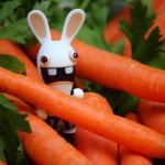 17 - Rabbit's Paradise