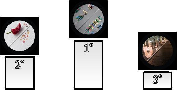 Vincitori del 19° Concorso P2L - Diagonale