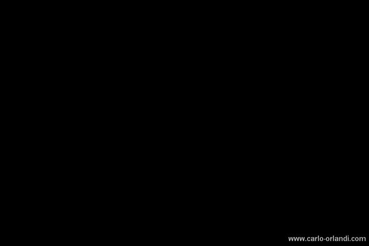 Foto di controllo per escludere la luce continua