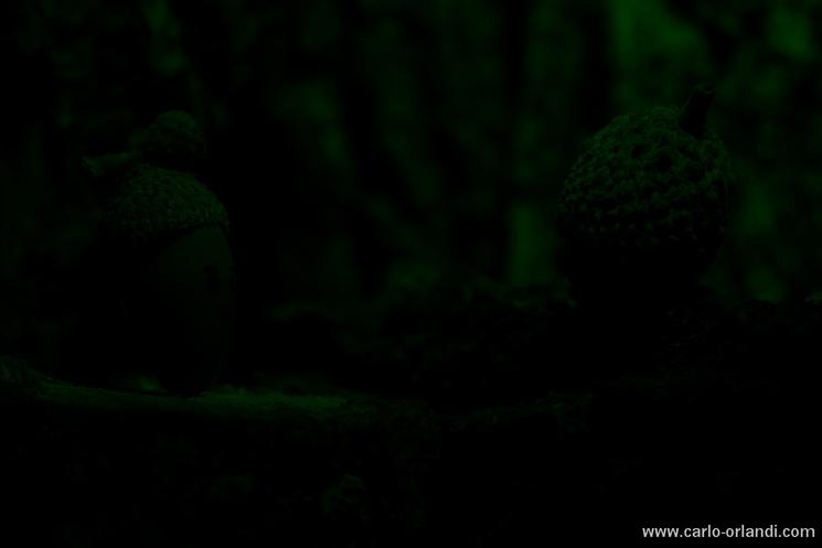 Luce speciale per aggiungere un po' di luce verde